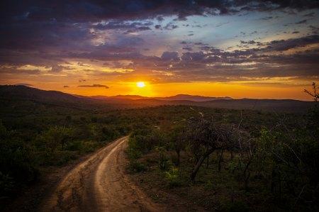 naomi road
